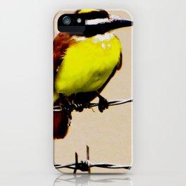Kiskadee iPhone Case