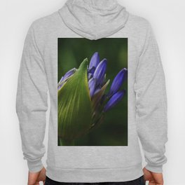 Newborn Lily of the Nile Flower Hoody