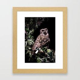 Handsome Hooter Framed Art Print