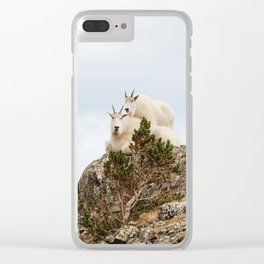 Three Ami-Goats // Scenic Hike Animals Photograph Colorado Wildlife National Park Mountain Goats Clear iPhone Case