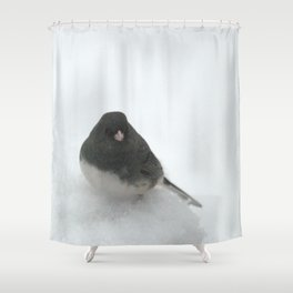 Snow Bird (Dark-eyed Junco) Shower Curtain