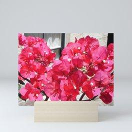 Hot Pink Bougainvillea Mini Art Print