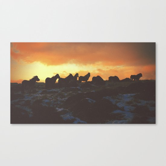 Golden Red Horses Canvas Print
