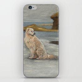 Oddball the maremma dog iPhone Skin