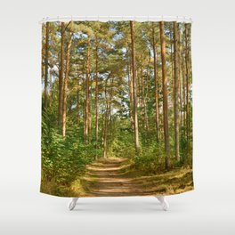 Forest path 41 Shower Curtain