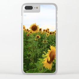 Sonnenblumen 5 Clear iPhone Case