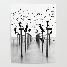 Cats Hunt Birds Poster