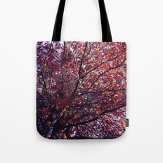 Under the trees - Autumn Tote Bag