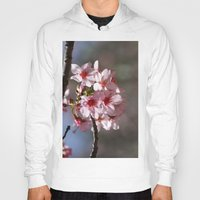 cherry blossoms Hoodies featuring Cherry Blossoms by Yvonnika