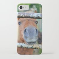 pony iPhone & iPod Cases featuring Pony by Blown A Wish Photography