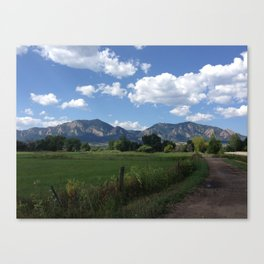 Clear Your Mind Canvas Print