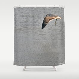 The Birds of Cutler Bay Wetlands (Amazing Grace!) Shower Curtain