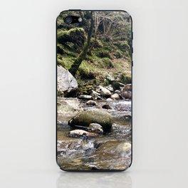 Stoney lake iPhone Skin