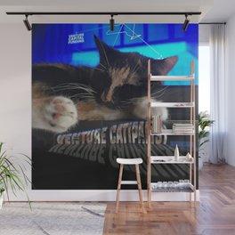 Sleeping Cat - Venture Catipalist Wall Mural