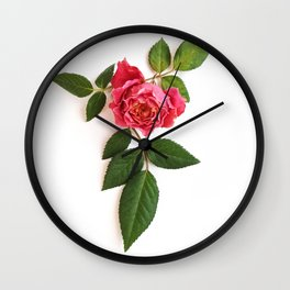Rose and leafs Wall Clock