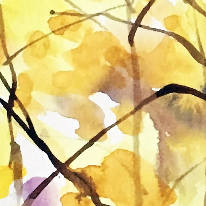 Fall Birch 01 Leggings