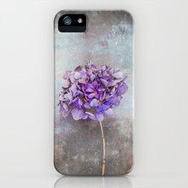 Beautiful Lilac Hydrangea iPhone Case