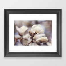 Magnolia Flower Framed Art Print