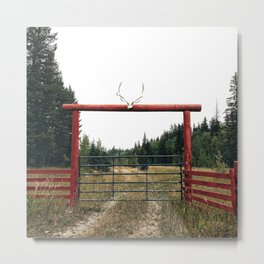 country gate Metal Print