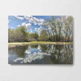 Mirrored Metal Print