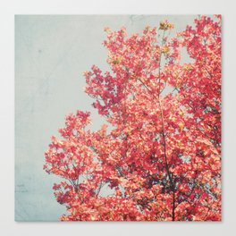 Cheerful Spring Canvas Print