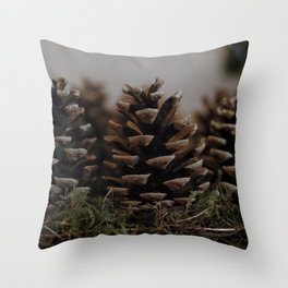 On the trail of the lonesome pine Throw Pillow