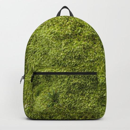 Moss by mirandapastor
