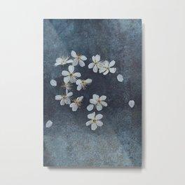 Delicate Sakura Blossom Metal Print