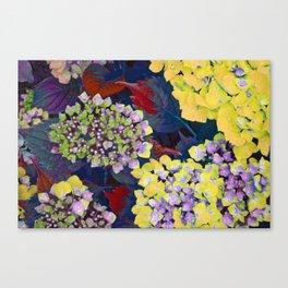 Hydrangea Yellow Canvas Print
