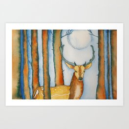White Tail Deer by Moonlight Art Print