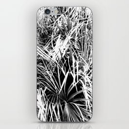 Palm Fronds In Black and White Abstract Photography iPhone Skin