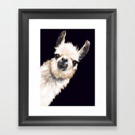 Sneaky Llama in Black Framed Art Print