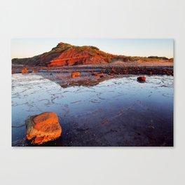 Rock Shelf at Long Reef 1 Canvas Print