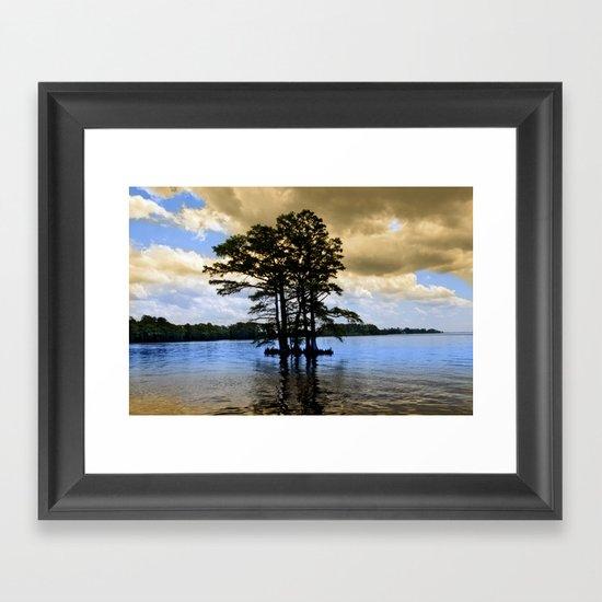 Cypress Trees Framed Art Print