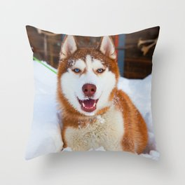 Hero in the snow 02 Throw Pillow