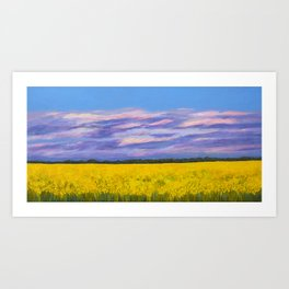 Canola Fields at Dusk Art Print