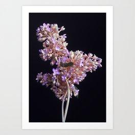 REGENERATE// Art Print