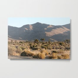 Joshua Trees Metal Print