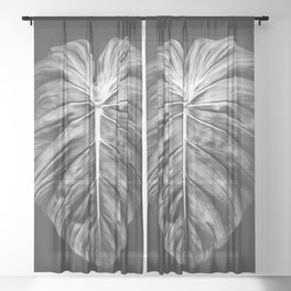 Monstera Deliciosa Black and White Sheer Curtain