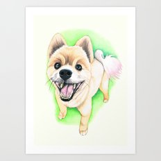 Pomeranian dog  - F.I.P. - Jack-Jack Art Print