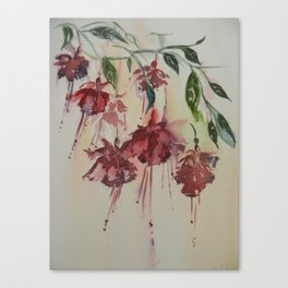 FUCHSIA SPRAY WEST CORK IRELAND Canvas Print
