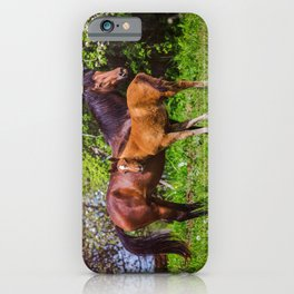Mother horse with little foal iPhone Case