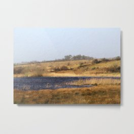 Wintry Lake Landscape in the West of Ireland Metal Print