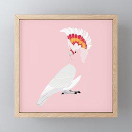 Major Mitchell's cockatoo Framed Mini Art Print
