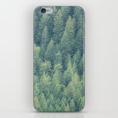 Forest Immersion iPhone & iPod Skin