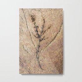 Nature #3 Metal Print