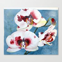 orchid Canvas Prints featuring orchid by Natalie