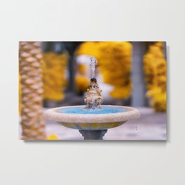 Fountain Infrared photography technique Metal Print