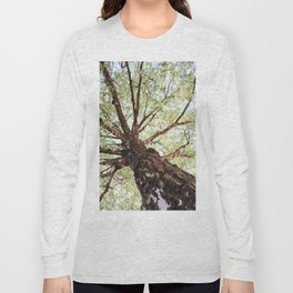 Old Birch in Spring Long Sleeve T-shirt