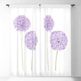 2 purple Allium watercolor  Blackout Curtain